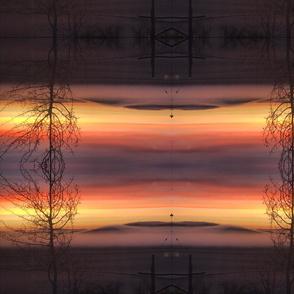 Trippy Tree Mountian sunrise