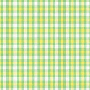 Green small plaid coordinates