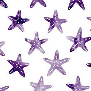 starfish - dark purple