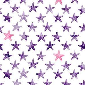 (small scale) starfish - dark purple