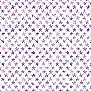 (micro scale) starfish - dark purple