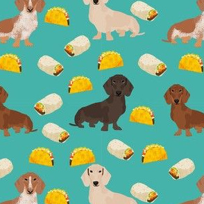 dachshund taco fabric - dogs and burritos design - turquoise