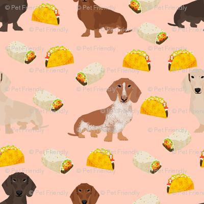 dachshund taco fabric - dogs and burritos design - blush