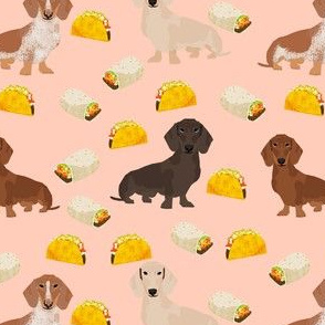 dachshund taco fabric - dogs and burritos design - blush