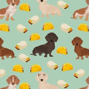 dachshund taco fabric - dogs and burritos design - mint