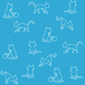 Blue and White Cats