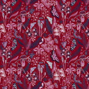 Orchid Botanical Study #021318 (burgundy)