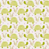 springtime tortoise