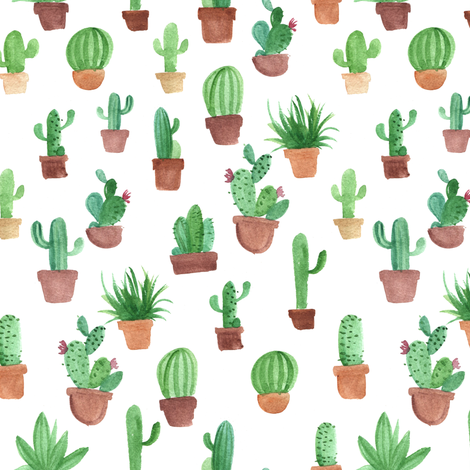 Watercolor cactus pots fabric by aliceelettrica on Spoonflower - custom fabric