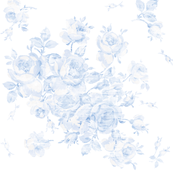 Lake Emily Summer Roses faded blueberry