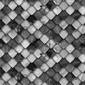 dragon scales - monochrome