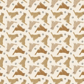 Tiny Golden Retrievers - tan