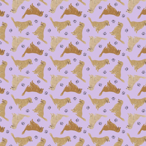 Tiny Golden Retrievers - purple