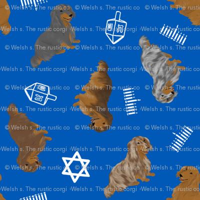 Tiny Longhaired Dachshunds - Hanukkah