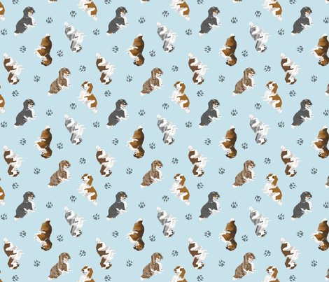 Rusticcorgitinydachshunds2longhaired03_shop_preview