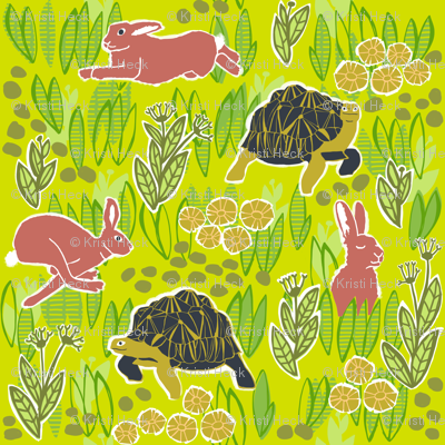 tortoise and hare 5