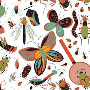 Bug Life - Tempest