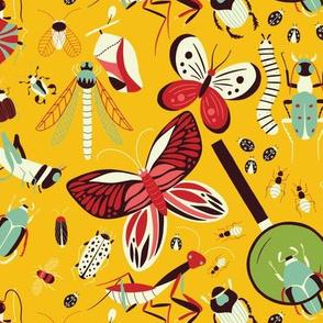 Bug Life - Sunny