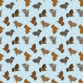 Tiny Wirehaired Dachshunds - winter snowflakes
