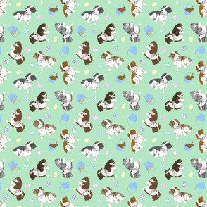 Tiny piebald Wirehaired Dachshunds - Easter