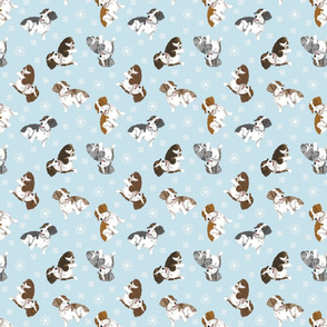 Tiny piebald Wirehaired Dachshunds - winter snowflakes