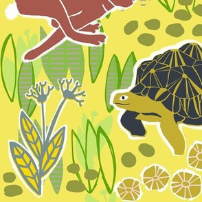 tortoise and hare 4