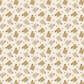 Micro tiny Wheaten Terriers - tan
