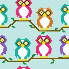 kilim owl smallest