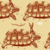 Rrrrhare-tortoise2_ed_shop_thumb
