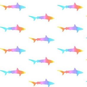 shark rainbow pride