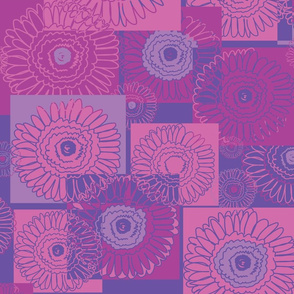 Gerberas in Purple