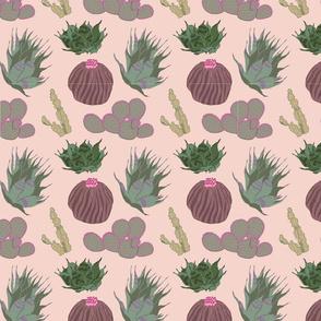 Cacti & Succulents Pink Motif