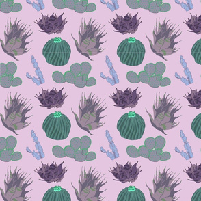 Cacti & Succulents Purple Motif