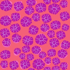 weeds_daisy_melon_tortoise + hare