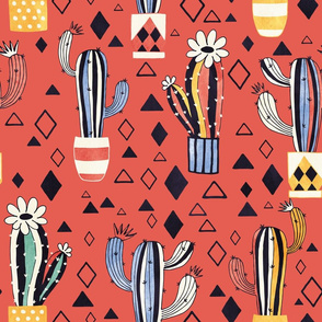 Cacti in a pot on red