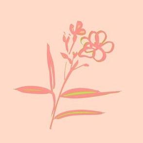 cestlaviv_oleander_peachleafgreen