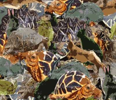 tortise and hare camo