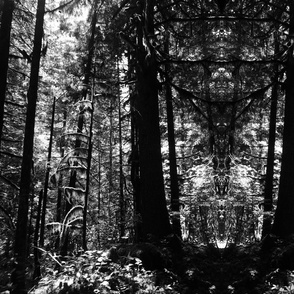 Trippy chrome woods
