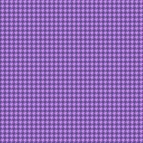 Dogtooth smaller (ultraviolet)