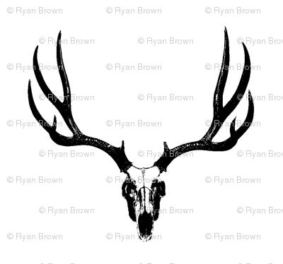 Deer Skulls // Large
