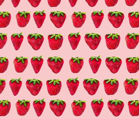 Painted Strawberry On Rose fabric by primaryproduce on Spoonflower - custom fabric