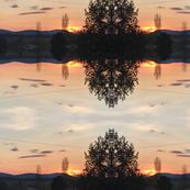 Trippy Bonanza sunset