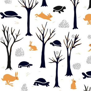 Turtles or tortoises? Hares or rabbits?