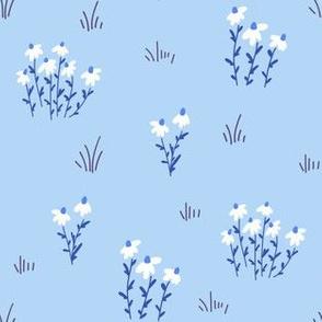 coneflower meadow - sky