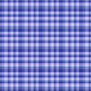 blue hyacinth plaid