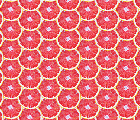 Painted Ruby Red Grapefruit Slices fabric by primaryproduce on Spoonflower - custom fabric