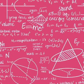 Common Equations - Hot Pink // Small
