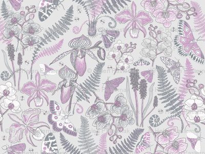 Orchid Botanical Study #021318 (orchid on silver)
