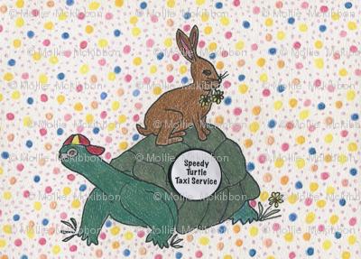 Turtle Taxi Service