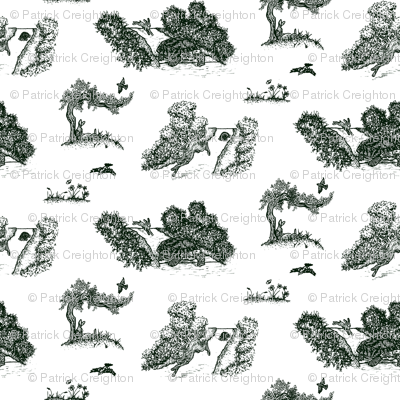 Tortoise And Hare Toile